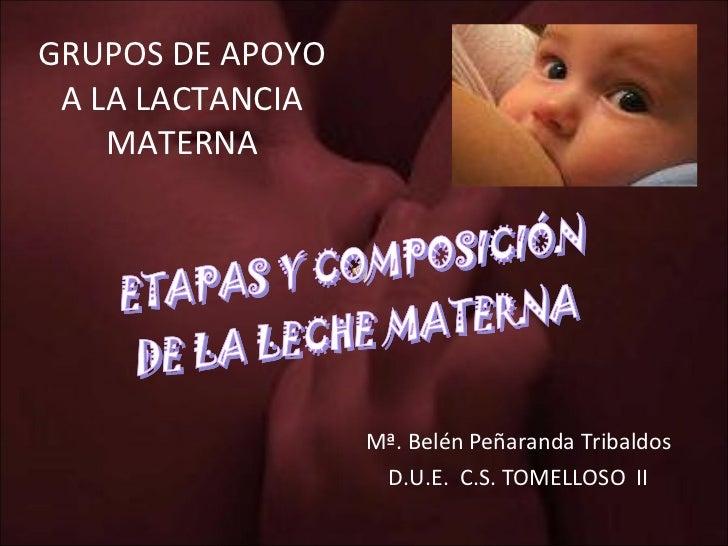 GRUPOS DE APOYO A LA LACTANCIA MATERNA Mª. Belén Peñaranda Tribaldos D.U.E.  C.S. TOMELLOSO  II