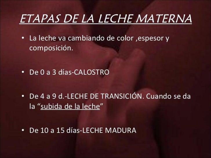 ETAPAS DE LA LECHE MATERNA <ul><li>La leche va cambiando de color ,espesor y composición. </li></ul><ul><li>De 0 a 3 días-...