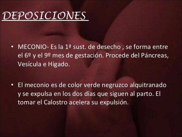 DEPOSICIONES  <ul><li>MECONIO- Es la 1ª sust. de desecho , se forma entre el 6º y el 9º mes de gestación. Procede del Pánc...