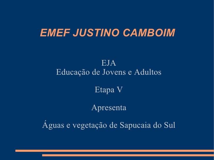 EMEF JUSTINO CAMBOIM EJA Educação de Jovens e Adultos Etapa V Apresenta Águas e vegetação de Sapucaia do Sul