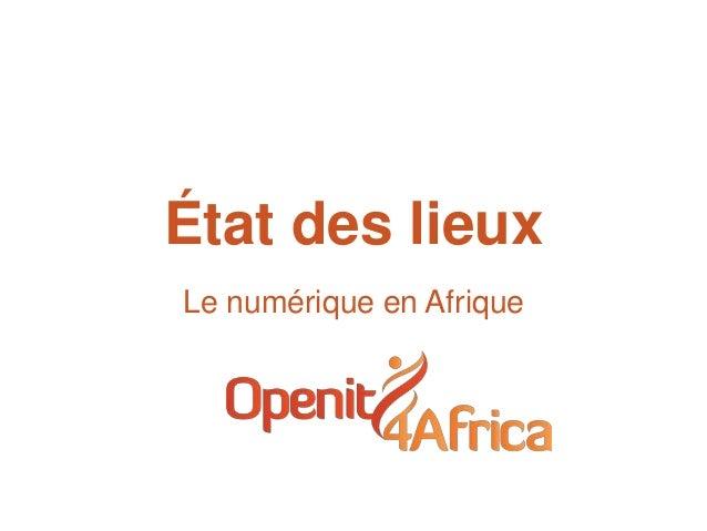 État des lieuxLe numérique en Afrique