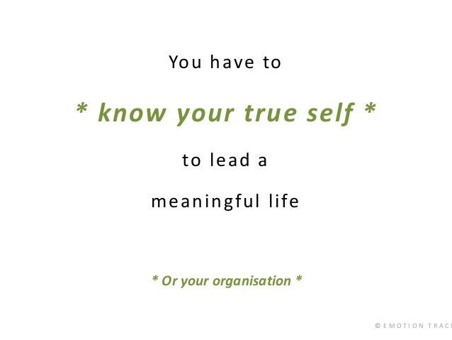 © E M O T I O N T R A C K You have to * know your true self * to lead a meaningful life * Or your organisation *