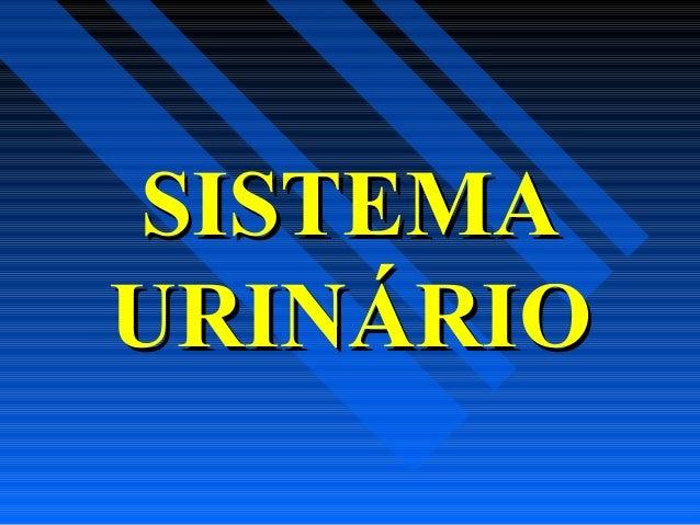 SISTEMASISTEMA URINÁRIOURINÁRIO