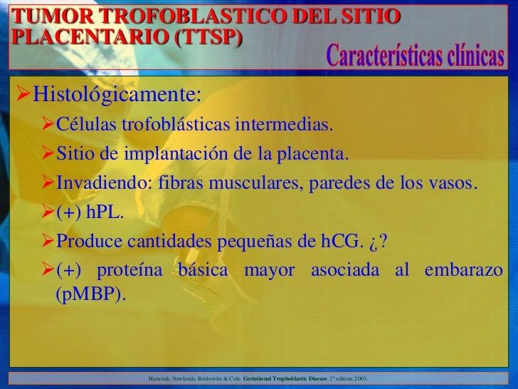 TUMOR TROFOBLASTICO DEL SITIOPLACENTARIO (TTSP)Histológicamente:  Células trofoblásticas intermedias.  Sitio de implant...