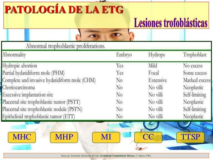 PATOLOGÍA DE LA ETG MHC    MHP                                     MI                                       CC          TT...