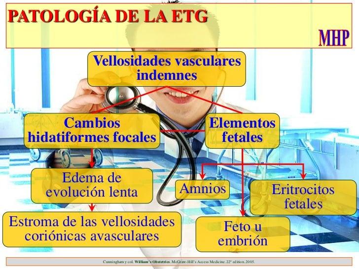 PATOLOGÍA DE LA ETG             Vellosidades vasculares                    indemnes         Cambios                       ...