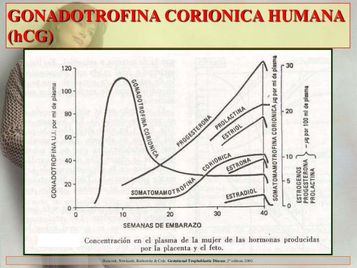 GONADOTROFINA CORIONICA HUMANA(hCG)        Hancock, Newlands, Berkowitz & Cole. Gestational Trophoblastic Disease. 2º edit...