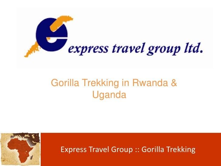 Gorilla Trekking in Rwanda & Uganda<br />Express Travel Group :: Gorilla Trekking <br />