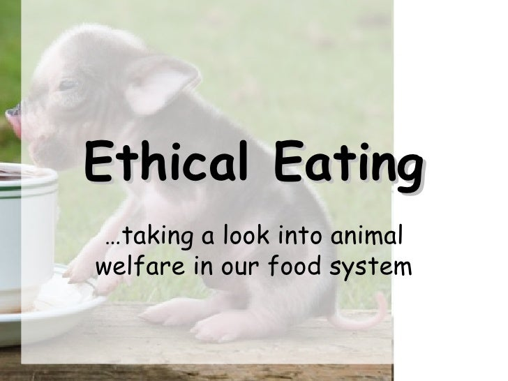 Ethical Eating … taking a look into animal welfare in our food system