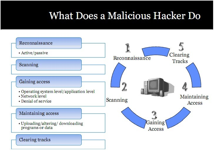 Authorized hacker certified penetration testing