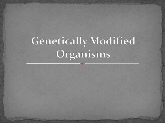 """ GMOs, or """"genetically modified organisms,"""" are plants or animals that have been genetically engineered with DNA from bac..."""