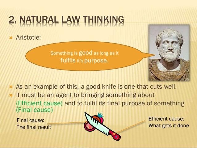 Law vs morality essay