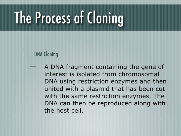 ethics of cloning Indeed, it is the bioethicists, not the scientists, who are now the most articulate defenders of human cloning: the two witnesses testifying before the national bioethics advisory commission in favor of cloning human beings were bioethicists, eager to rebut what they regard as the irrational concerns of those of us in opposition.