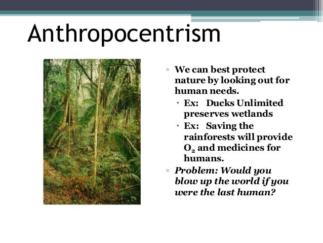 Biocentric Environmental Ethics, What is it?