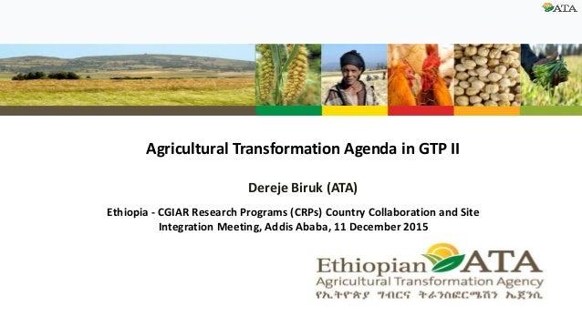 Agricultural Transformation Agenda in GTP II Dereje Biruk (ATA) Ethiopia - CGIAR Research Programs (CRPs) Country Collabor...