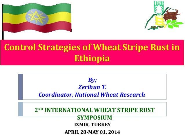 Control Strategies of Wheat Stripe Rust in Ethiopia IZMIR, TURKEY APRIL 28-MAY 01, 2014 By; Zerihun T. Coordinator, Nation...