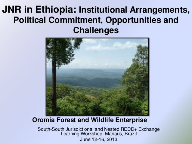 JNR in Ethiopia: Institutional Arrangements, Political Commitment, Opportunities and Challenges South-South Jurisdictional...