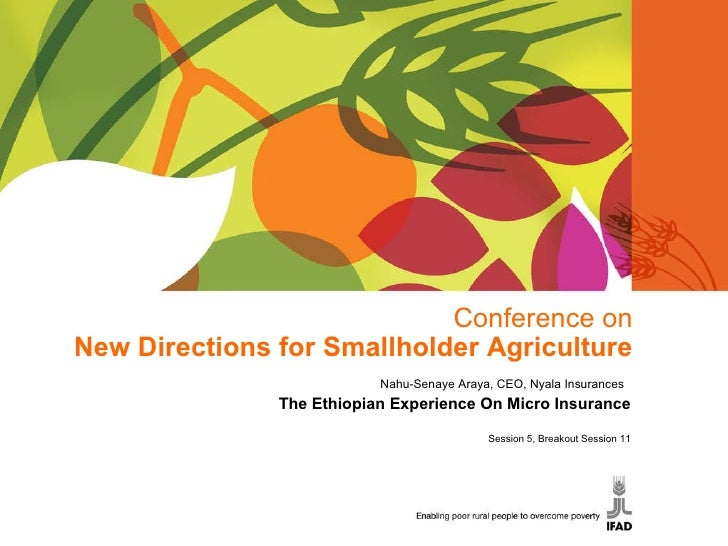 Conference on New Directions for Smallholder Agriculture Nahu-Senaye Araya, CEO, Nyala Insurances  The Ethiopian Experienc...