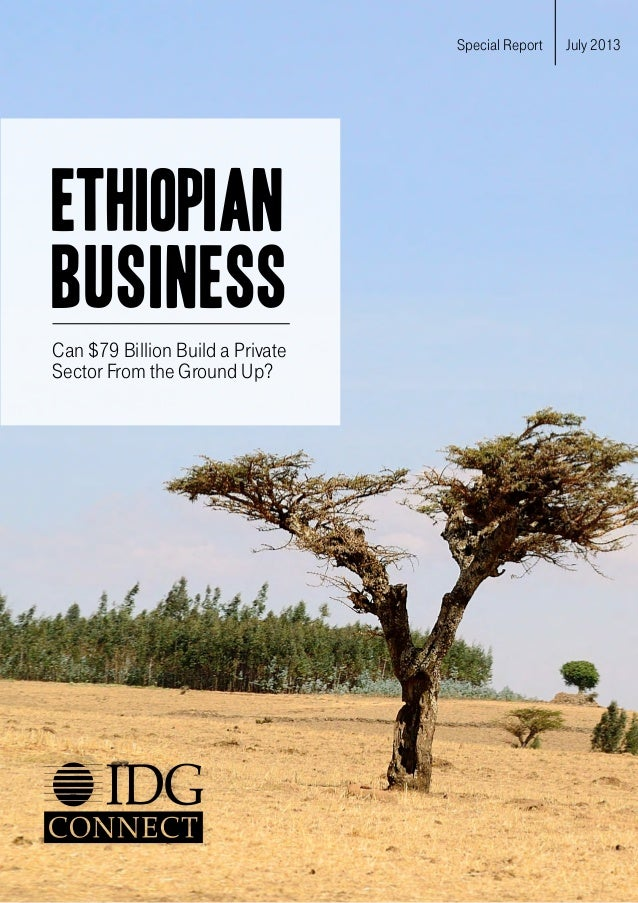 ETHIOPIAN BUSINESS Can $79 billion build a private sector from the ground up? Special Report July 2013 ETHIOPIAN BUSINESS ...