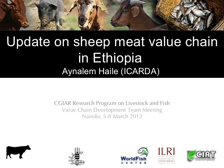 Update on sheep meat value chain           in Ethiopia          Aynalem Haile (ICARDA)  Planning Meeting September 2011   ...