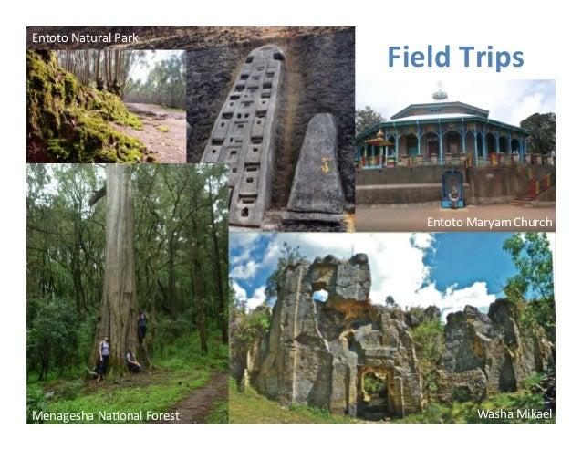 Field  Trips  Entoto  Maryam  Church  Menagesha  Na>onal  Forest  Washa  Mikael  Entoto  Natural  Park