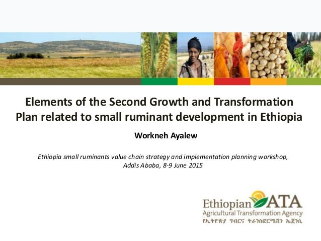 Elements of the Second Growth and Transformation Plan related to small ruminant development in Ethiopia Workneh Ayalew Eth...