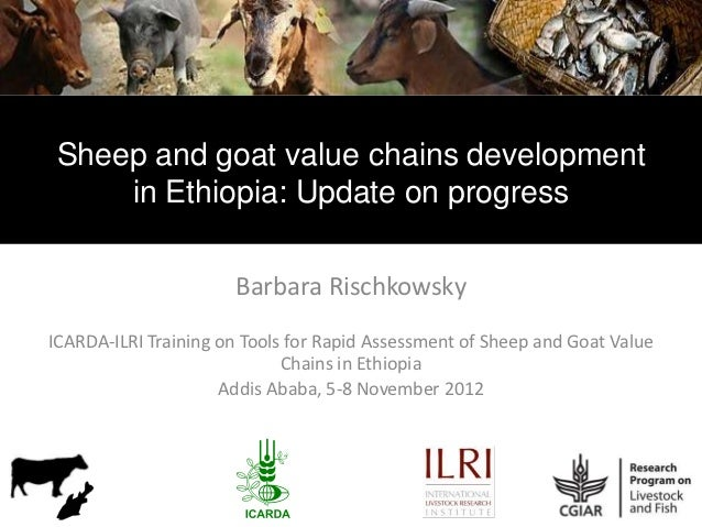 Sheep and goat value chains development     in Ethiopia: Update on progress                      Barbara RischkowskyICARDA...