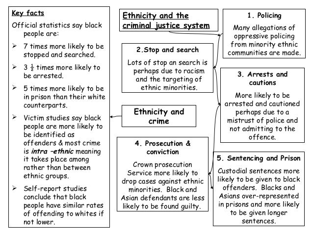 who commits crime essay