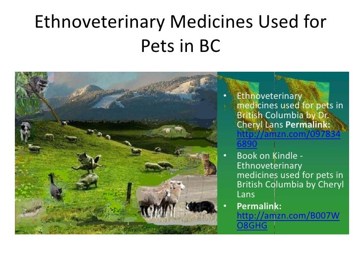 Ethnoveterinary Medicines Used for            Pets in BC                     • Ethnoveterinary                       medic...