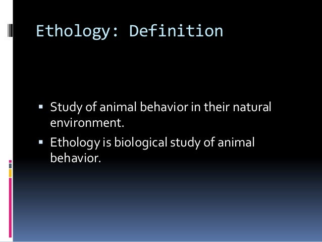 Ethology is the study of animal _____. - Brainly.com
