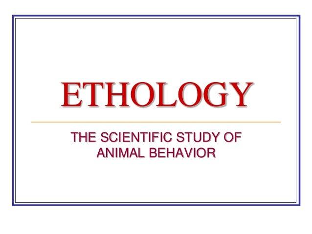 ETHOLOGY THE SCIENTIFIC STUDY OF ANIMAL BEHAVIOR