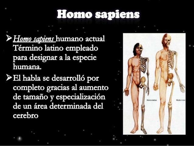 El origen del ser humano
