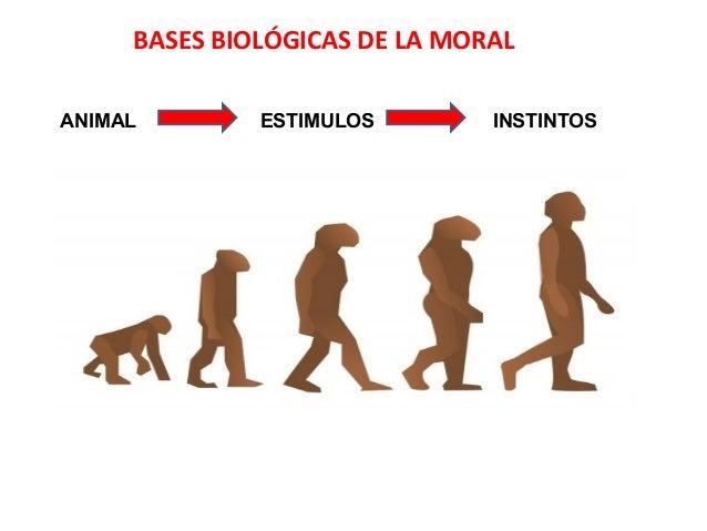 BASES BIOLÓGICAS DE LA MORAL ANIMAL ESTIMULOS INSTINTOS
