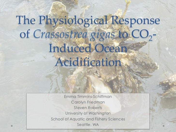 The  Physiological  Response   of  Crassostrea  gigas  to  CO2-­‐‑        Induced  Ocean           Acidification	          ...