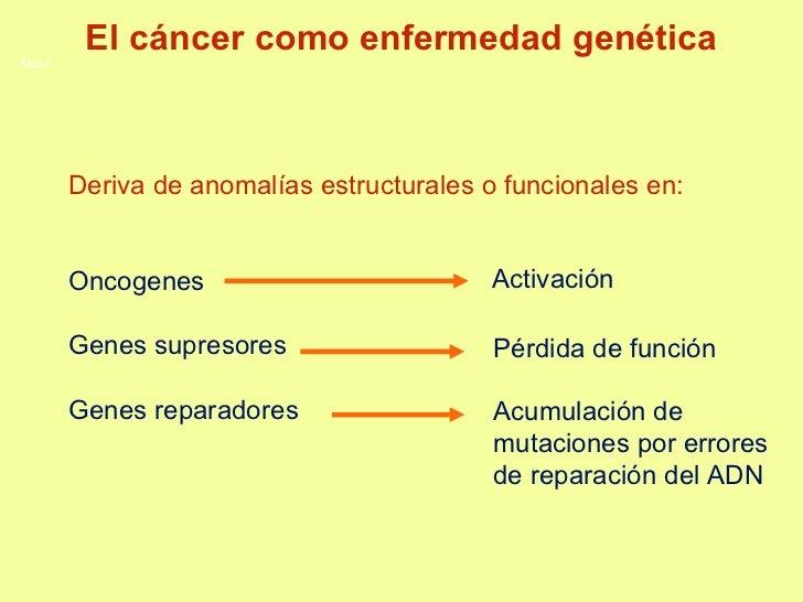 Deriva de anomalías estructurales o funcionales en: Oncogenes Genes supresores  Genes reparadores Activación Pérdida de fu...
