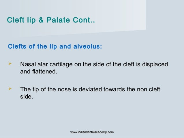 Clefts of the lip and alveolus:  Nasal alar cartilage on the side of the cleft is displaced and flattened.  The tip of t...