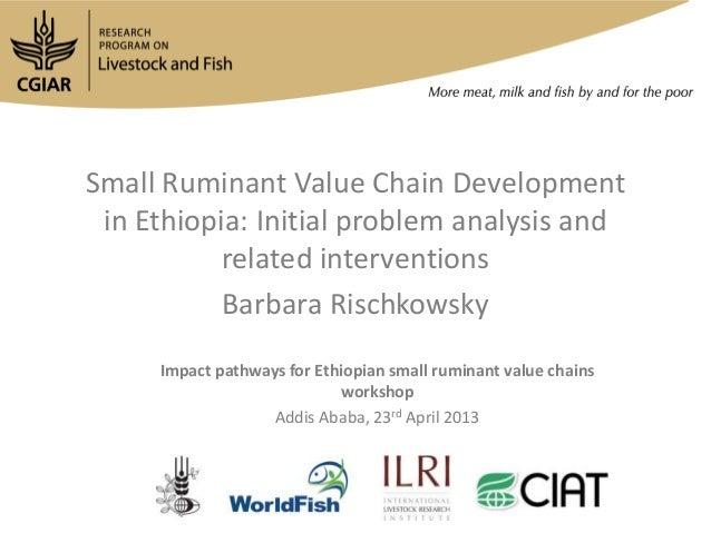Small Ruminant Value Chain Developmentin Ethiopia: Initial problem analysis andrelated interventionsBarbara RischkowskyImp...