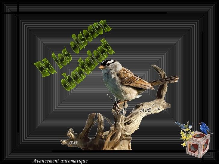 Et les oiseaux chantaient Avancement automatique