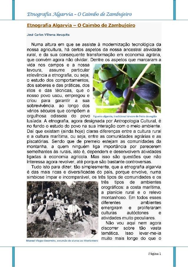 'Etnografia JAfyarvía - O CaímBo de ZamBujeíro Etnografia Algarvia - O Caimbo de Zambuieiro José Carlos Vilhena Mesquita N...