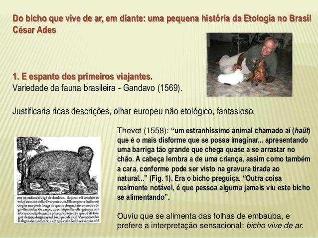 Etologico significado