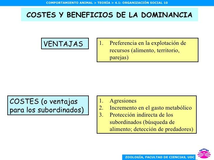 COSTES Y BENEFICIOS DE LA DOMINANCIA <ul><li>Preferencia en la explotación de recursos (alimento, territorio, parejas) </l...