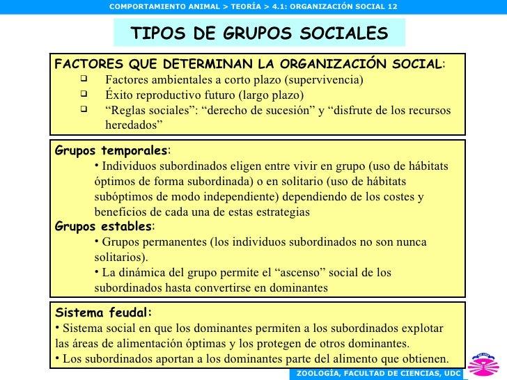 TIPOS DE GRUPOS SOCIALES <ul><li>Grupos temporales : </li></ul><ul><ul><li>Individuos subordinados eligen entre vivir en g...