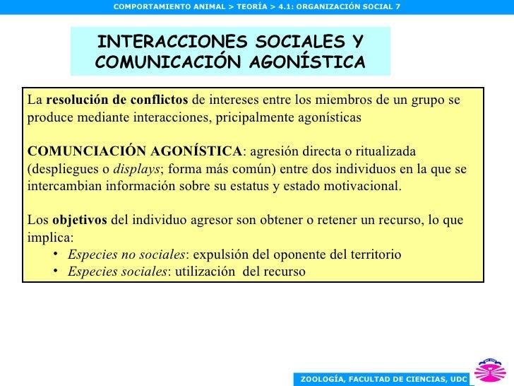 INTERACCIONES SOCIALES Y COMUNICACIÓN AGONÍSTICA <ul><li>La  resolución de conflictos  de intereses entre los miembros de ...