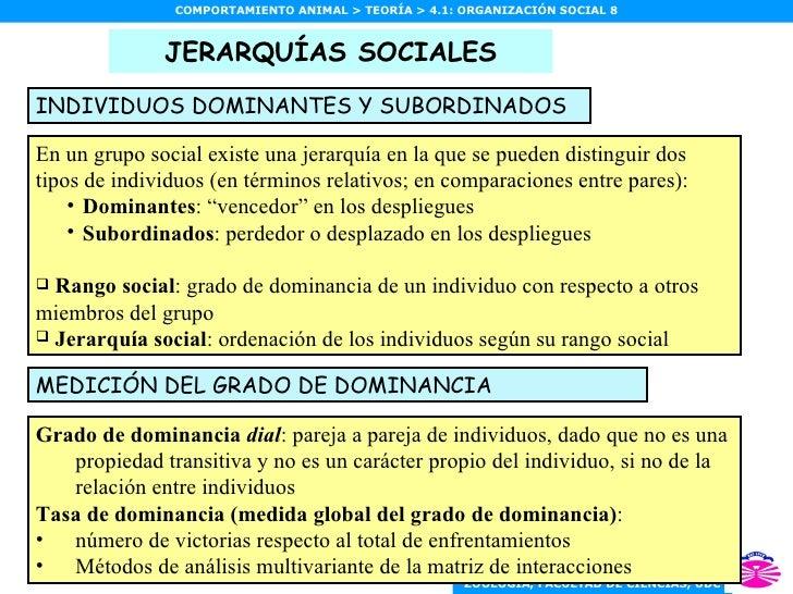 JERARQUÍAS SOCIALES <ul><li>En un grupo social existe una jerarquía en la que se pueden distinguir dos tipos de individuos...