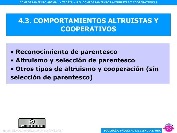 4.3. COMPORTAMIENTOS ALTRUISTAS Y COOPERATIVOS <ul><li>Reconocimiento de parentesco </li></ul><ul><li>Altruismo y selecció...