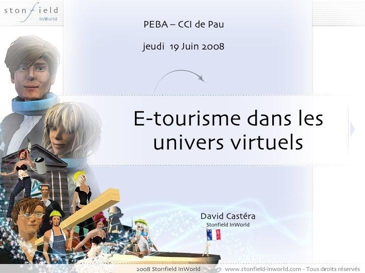 E-tourisme dans les univers virtuels David Castéra Stonfield InWorld PEBA – CCI de Pau jeudi  19 Juin 2008