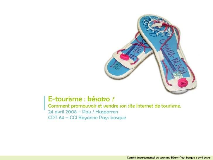 E-tourisme : késako ? Comment promouvoir et vendre son site Internet de tourisme. 24 avril 2008 – Pau / Hasparren CDT 64 –...