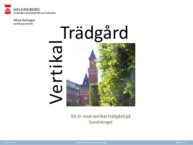 Trädgård  Ett år med vertikal trädgård på  Sundstorget  STADSBYGGNADSFÖRVALTNINGEN  Vertikal  Alfred Nerhagen  Landskapsar...