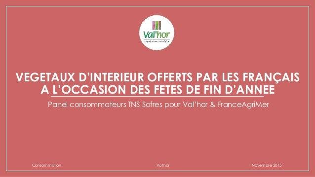 VEGETAUX D'INTERIEUR OFFERTS PAR LES FRANÇAIS A L'OCCASION DES FETES DE FIN D'ANNEE Panel consommateurs TNS Sofres pour Va...