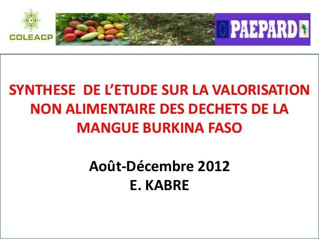 SYNTHESE DE L'ETUDE SUR LA VALORISATION   NON ALIMENTAIRE DES DECHETS DE LA        MANGUE BURKINA FASO          Août-Décem...